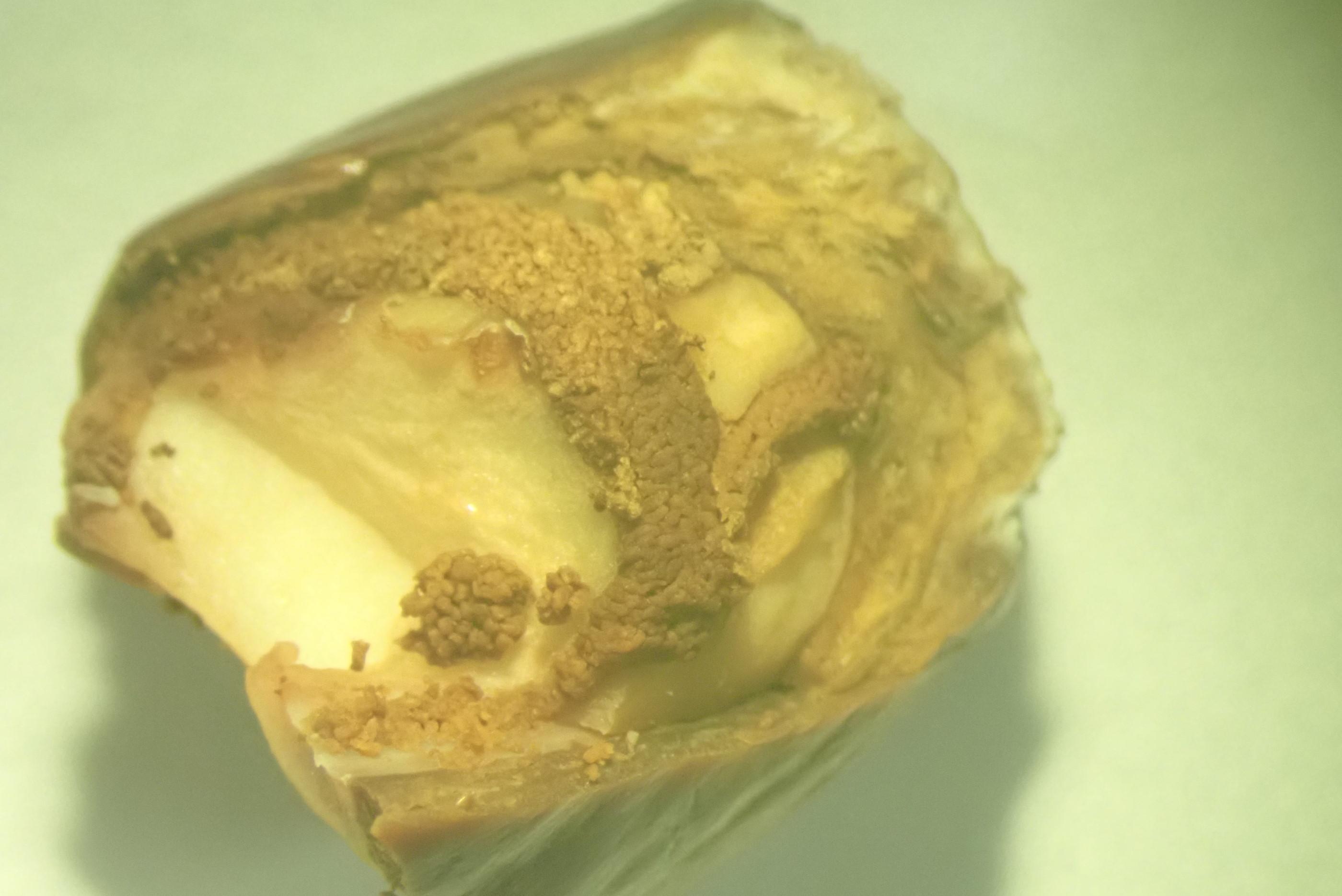荔枝細蛾幼蟲取食種子危害狀