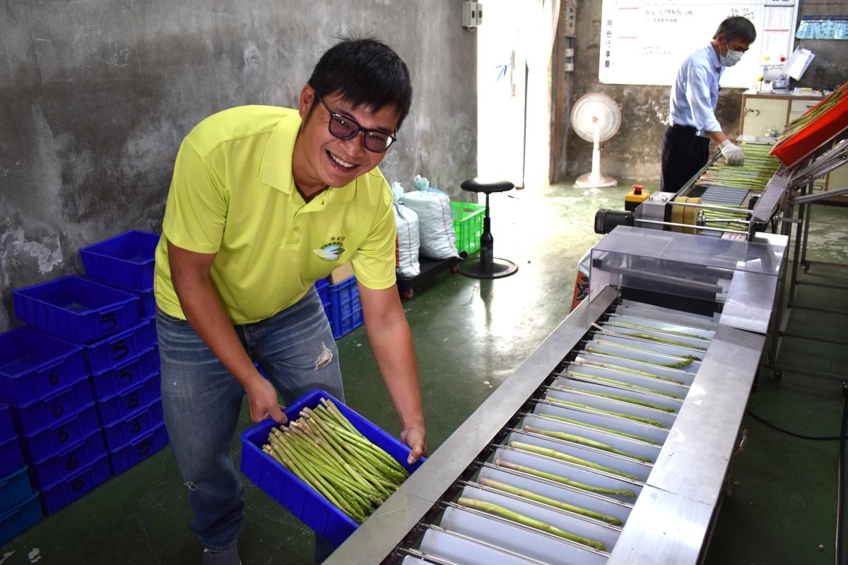 設施蘆筍省工生產技術,整套報你知