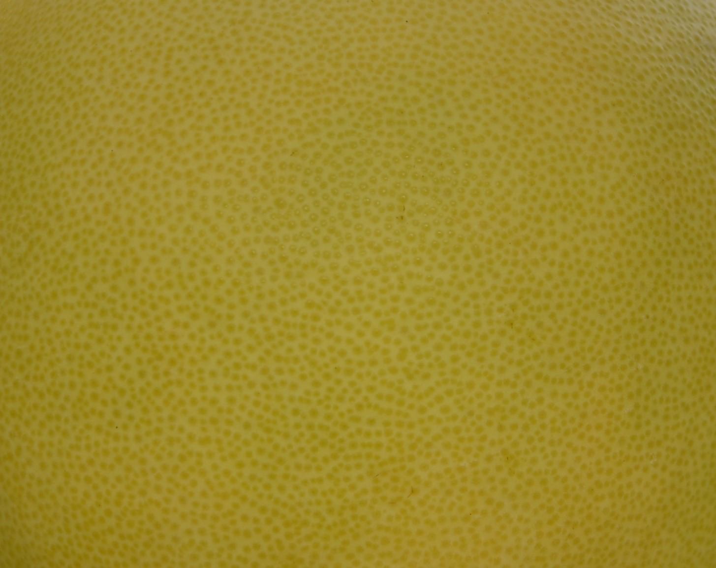 大白柚應挑選果皮光滑、油胞分佈均勻、細緻,品質最優
